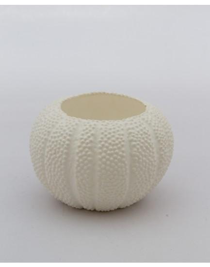 Mini Castiçal concha