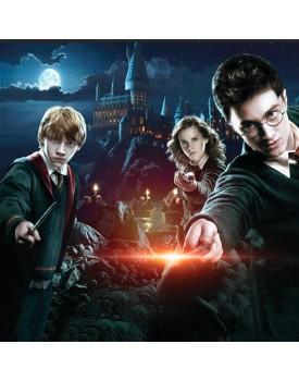 Tecido Harry Potter 3 metros x 2,20 de altura
