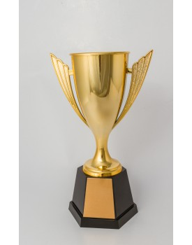 Trofeu Taça Tam M