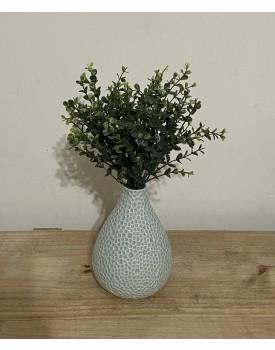 Folhagem de Mini Eucalipto verde  ( Não acompanha o vaso )